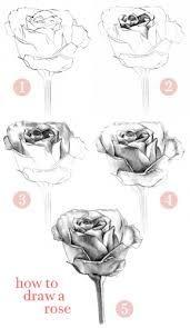 Resultado de imagen para como dibujar una rosa                              …