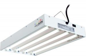 2-agrobrite-t5-flt24-2-foot-4-tube-fixture-with-included-fluorescent-grow-lights