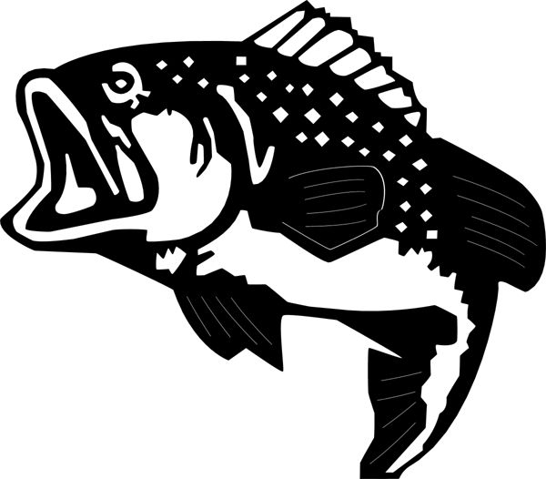 36 best Cakes  Silhouette fish images on Pinterest  Silhouette