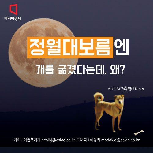 [아시아경제 이현주 기자, 이경희 디자이너] 정월대보름엔 개를 굶겼다는데, 왜죠?음력 1월15일은 정월대보름입니다.정월은 음력으로 한 해의 첫째 달, 즉 ...