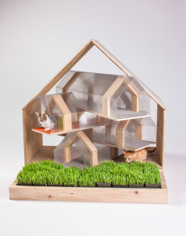 Inspired Outdoor Cat Shelters by Architects for Animals Photo