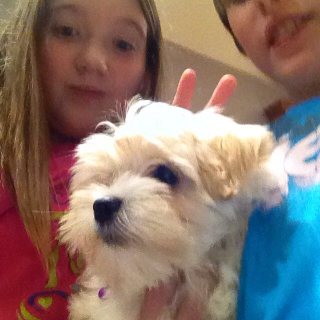Me and my friends dog Lola