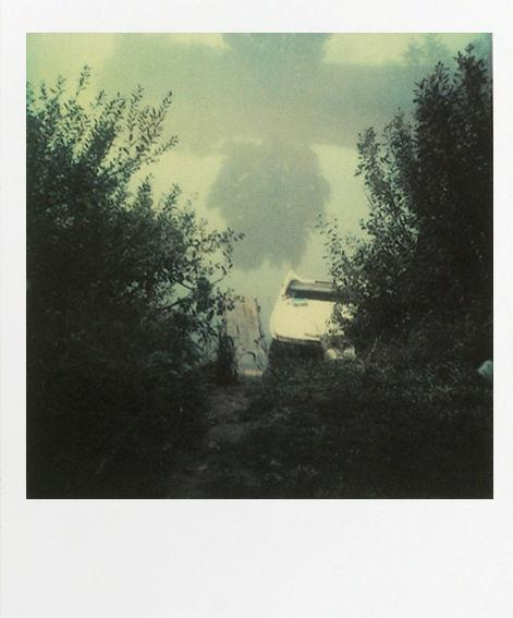 Polaroid by Andrei Tarkovski
