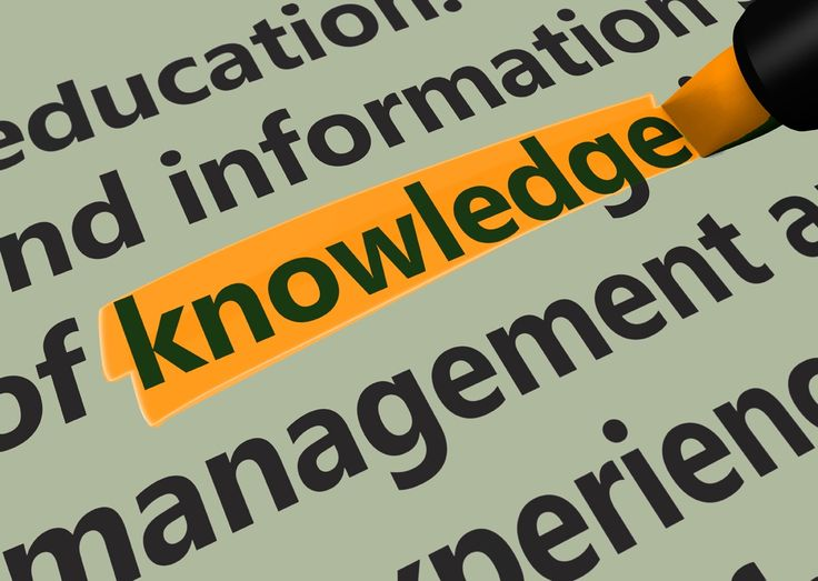 Education concept with a 3d render of related words and knowledge text highlighted with a green marker.