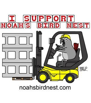 I Support Noah's Bird Nest