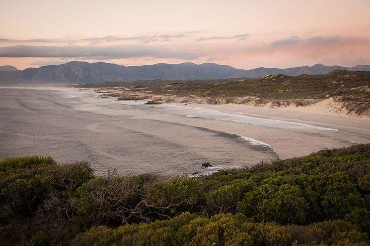 Grootbos Ocean Gallery, The Walker Bay of South Africa #travel #SouthAfrica #beach http://www.grootbos.com/en/destination/ocean/whales-walker-bay