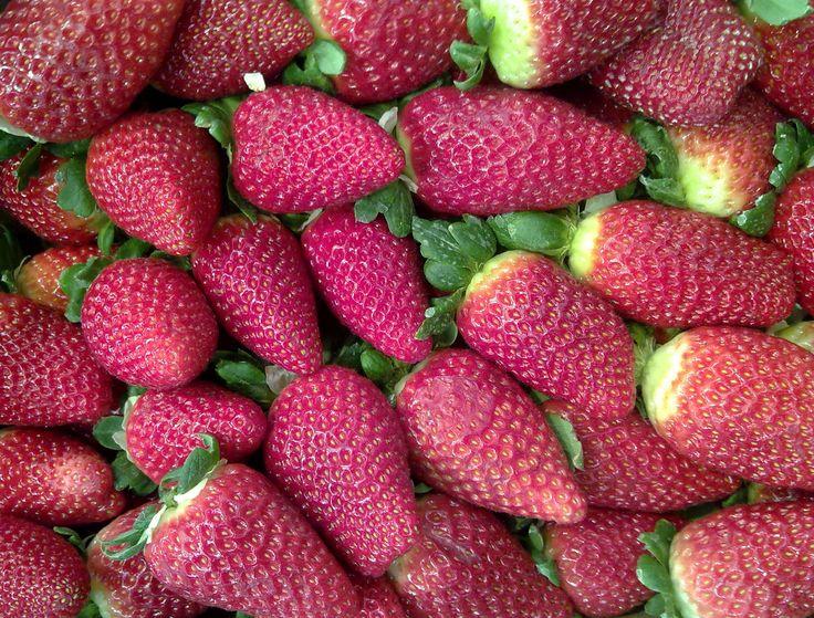 Las fresas contienen selenio, que aumenta la energía y disminuye la ansiedad.