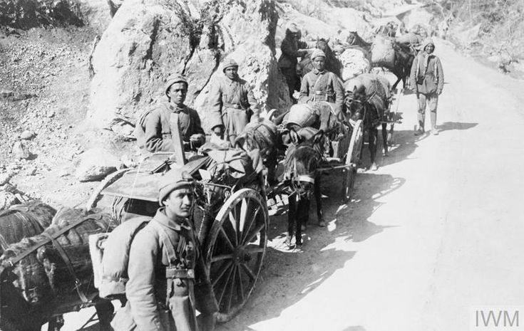 THE TURKISH ARMY ON THE HOME FRONT, 1914-1918