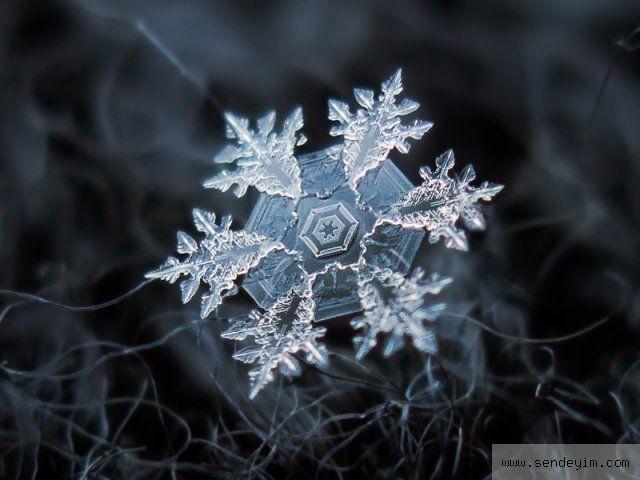 Kar taneleri görenleri hayran bıraktı - Resim 1