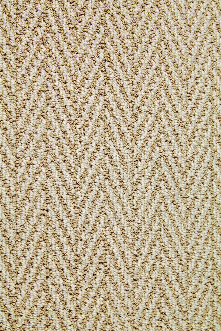 Pin On Stainmaster Carpet