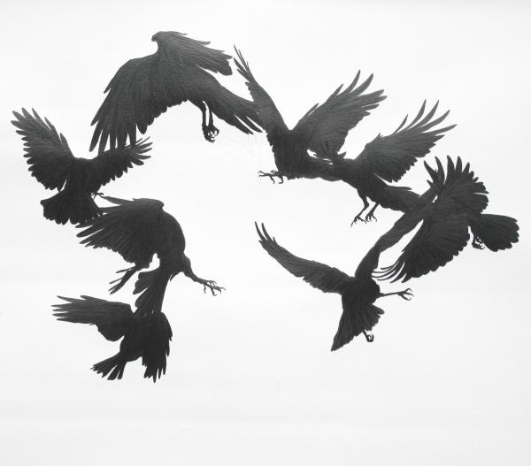 'Crows Surround' by Matt Collier, graphite on paper.