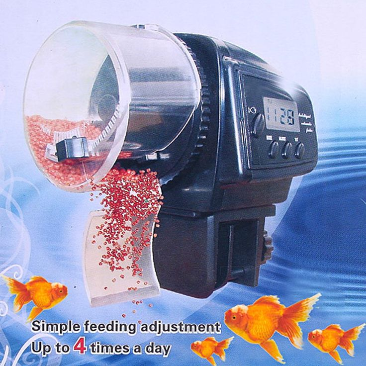 Like or tag someone who would love this Digital LCD Automatic Fish Feeder     FREE worldwide shipping    https://www.pawsify.com/product/digital-lcd-automatic-fish-feeder/