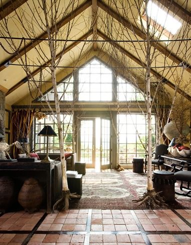 .: Living Rooms, Birches, Trees Houses, Design Interiors, Outdoor Decor, Heidi Claire, Big Trees, Indoor Trees, Houses Design