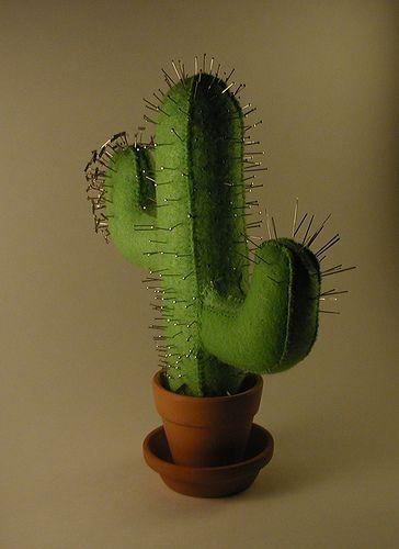 Cactus pinchoso, agujas siempre a mano