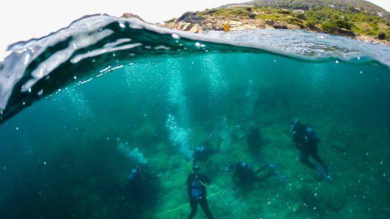 Nella baia di Vroulia l'isola ospiterà il Marine Sanctuary, centro di recupero per animali marini in grado di fornire cure per la riabilitazione. Un piccolo paradiso dove delfini, foche monache e tartarughe riceveranno aiuto nel rispetto della biodiversità
