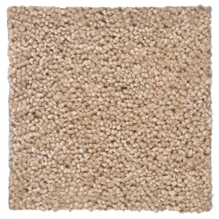 Accolade Hardtwist Cut Pile 100% Pure new wool Carpet - Cavalier Bremworth