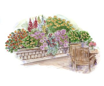 Add a raised garden to create a wall of color along one of the sides of your deck or patio: http://www.bhg.com/home-improvement/patio/designs/garden-plans-for-decks-and-patios/?socsrc=bhgpin050914makeaboldstatementpage=1