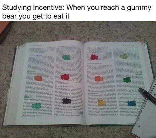 Ma nouvelle façon d'étudier