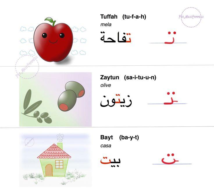 parole con lettera Taa arabo, disegni alfabeto arabo, esempi in italiano. Lingua...