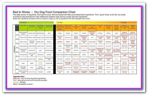 Best Dry Dog Food Comparison Chart With Images Dry Dog Food