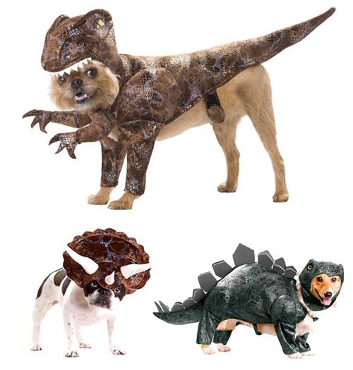 Dinosaur Costumes -Animal Planet.
