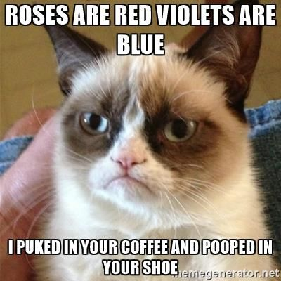 roses are red violets are blue i puked in your coffee and pooped in your shoe - Grumpy Cat