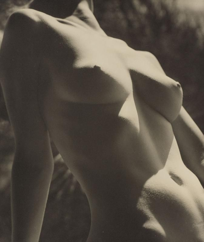 Nude in Sunlight 1935. Max Dupain.