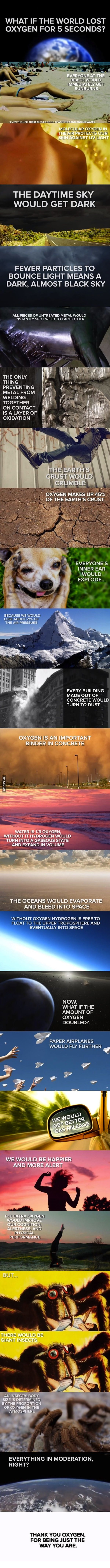 What If The World Lost Oxygen For 5 Seconds? The world was made perfect for Humans, and made by the most perfect being!