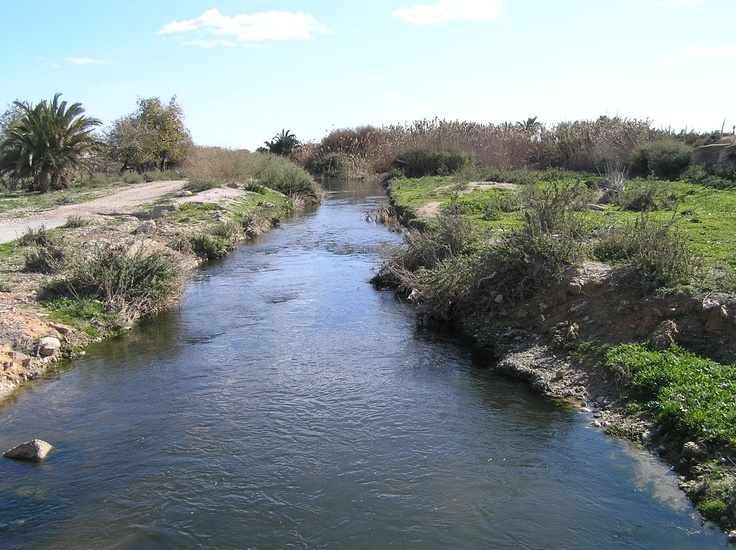 Rio Vinalopó casi llegando a su desembocadura en l´Assarb de Dalt, del Niño o Sivaes