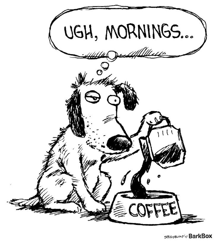 Sometimes Tuesday morning is just as rough as Monday!