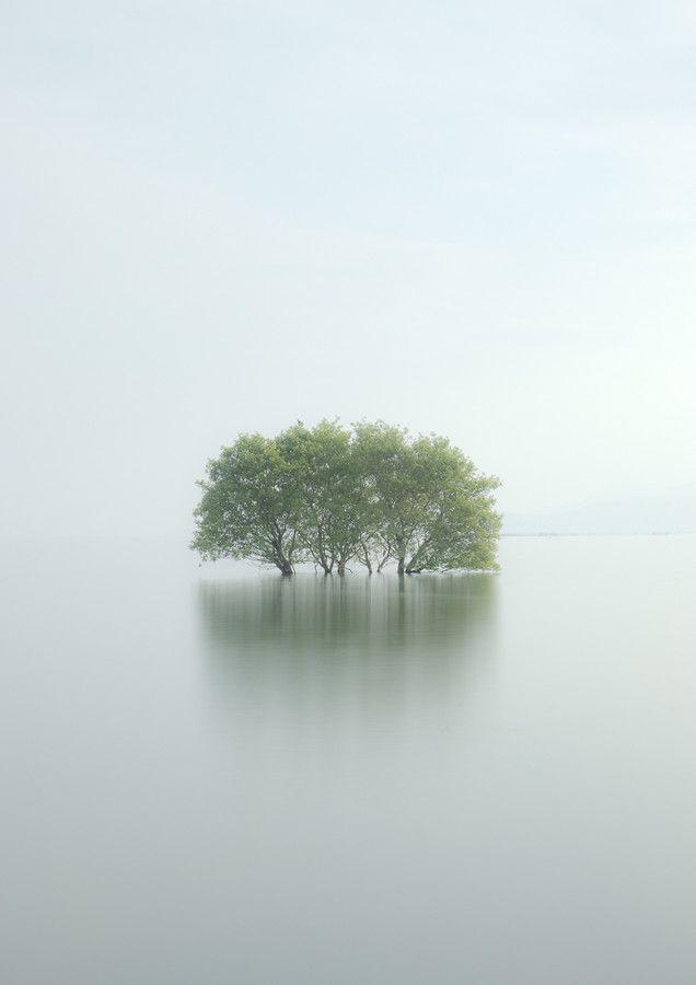 Minimalist photography by Makoto Shukawa