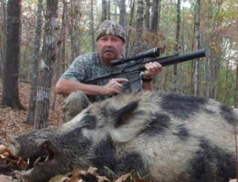 surviving in the wild wild hogs We used capture-mark-recapture methods to model survival in a mediterranean  population (s s majori) of wild boars during an 8-year period,.