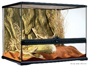If you're hunting for or to make bearded dragon cages, well there's a full array of differing types, colors, and sizes to choose between. There are some truly cool purpose built cages (tanks) specifically designed with the bearded dragon to mind, and they're not truly that costly when you suspect that they can doubtless be in your house for no less than 10 years.