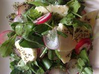peperige salade met meikaas en maanzaad-citroendressing