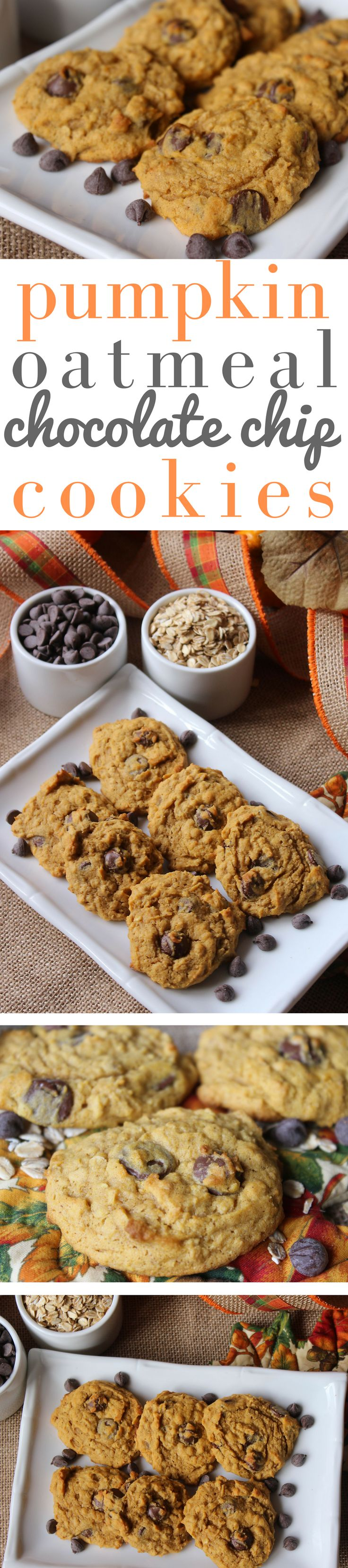 The cookie's soft and delicate with a slight pumpkin flavor. It doesn't have the typical pumpkin spices, just cinnamon. Oats add a little texture and chocolate chips are a great compliment to the pumpkin flavor.
