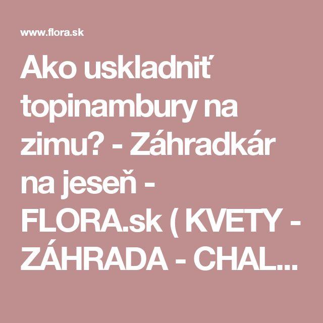 Ako uskladniť topinambury na zimu? -       Záhradkár na jeseň - FLORA.sk ( KVETY - ZÁHRADA - CHALUPA - LIFESTYLE - ZDRAVIE )