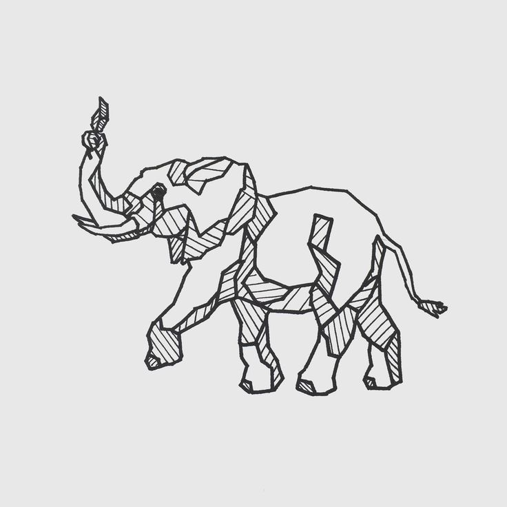 Elephant Line Drawing Tattoo : Best geometric illustrations images on pinterest