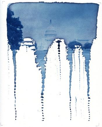 """Annie Hogan // Bloodlines // cyanotype // 10 x 8"""""""