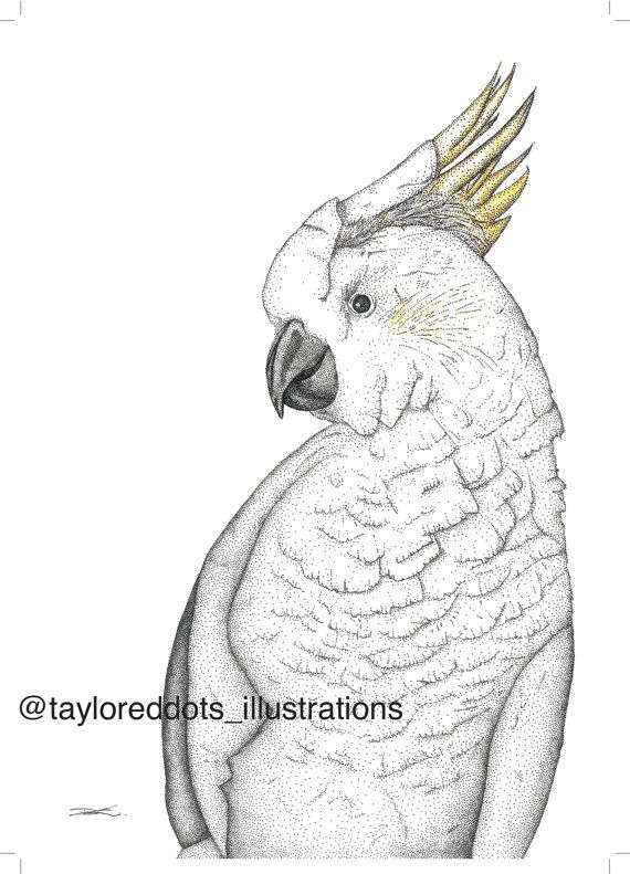 Lucy the Cockatoo.... Dots Only by TayloredDots on Etsy