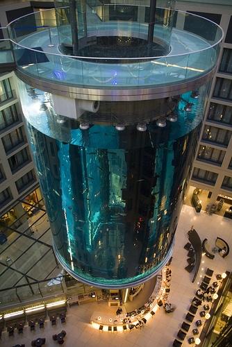 Largest Acrylic Glass Cylinder: Aquariums Fish, Amazing Stuff, Berlin, Fish Aquariums, Glass Aquarium, Cylindrical Acrylic, Transparent Elevator