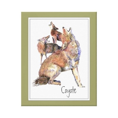 Original Watercolor Howling Coyotes Animal Canvas Print by countrymousestudio: Animals, Canvas Prints, Howl'S Coyotes, Originals Watercolor, Coyotes Animal, Animal Canvas, Natural Canvas, Animal Natural, Foxes Animal
