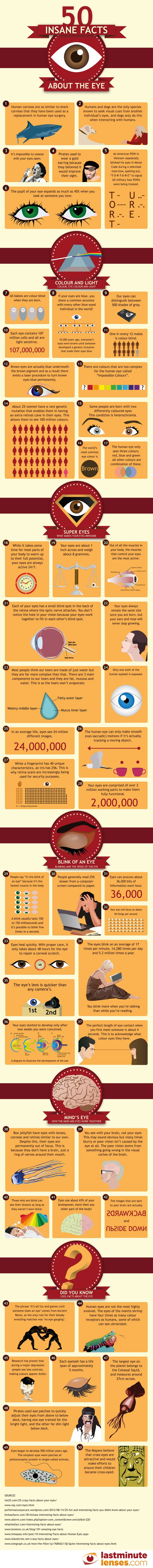 50 insane facts about the eye -From how much your eye weighs to what makes is in a tear drop, this insightful Infographic has you covered with everything you ever wanted to know about the human eye. -Posted Mar 05, 2014 THIS IS AMAZING!! I LEARNED SO MANY THINGS ABOUT EYES!
