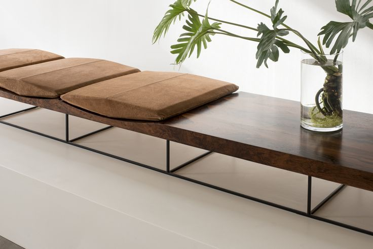 Rosewood bench by Jorge Zalszupin, vase with a tropical plant: Philodendron…