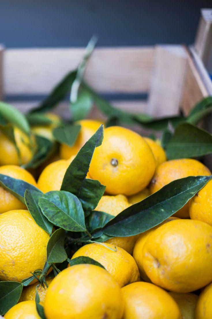Frische Zitronen // Tipps für einen Urlaub am Gardasee