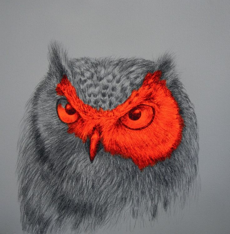 'Archimedes of the Wild' by Louise McNaught