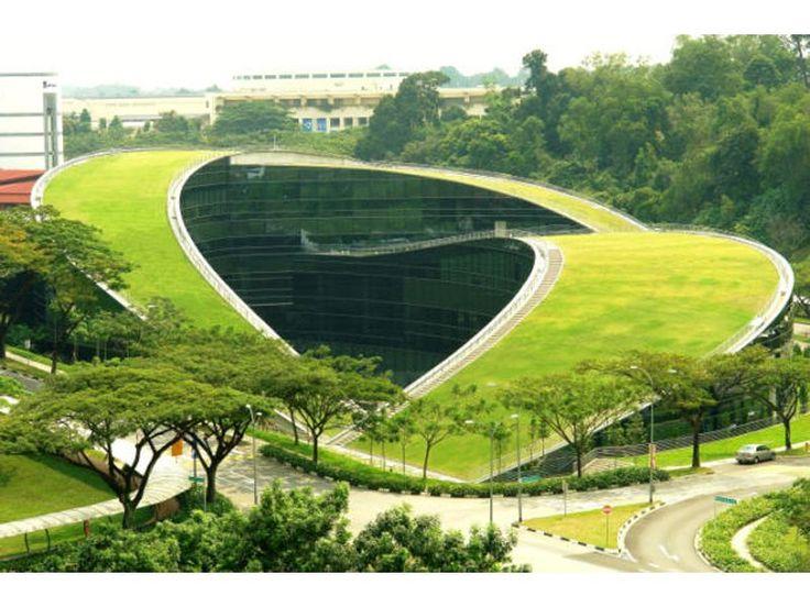 Архитектор Фрэнк Ллойд Райт придумал новое направление – биоморфизм.