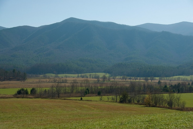 Farm Field in Great Smokey Mountain National Park, Tennessee