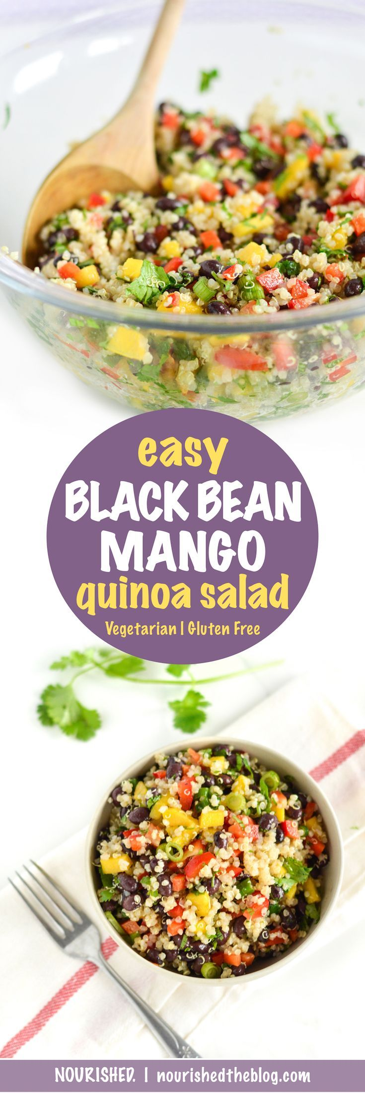 Easy Black Bean Mango Quinoa Salad | recipe | gluten free, vegan | quinoa salad with zesty lime dressing | easy quinoa recipe |