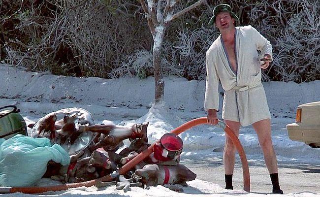 Best 25 Cousin Eddie Christmas Vacation Ideas On