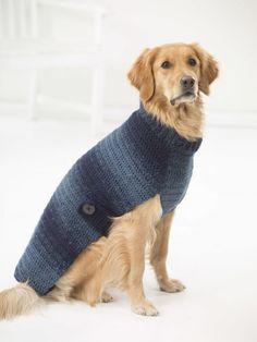 Hundepullover stricken mit Ombré Effekt